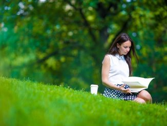 study in summer