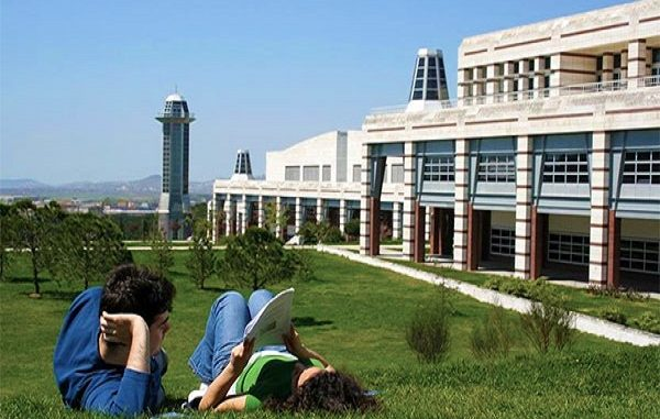 College or University